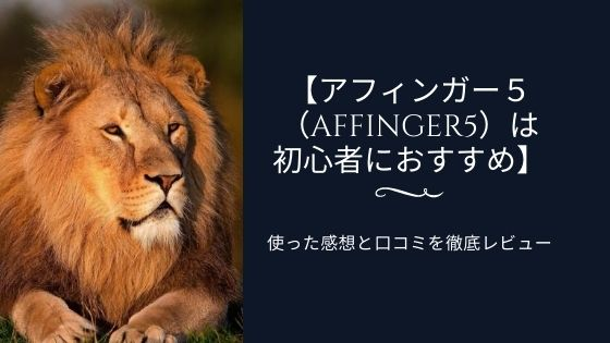 アフィンガー5(AFFINGER5)は初心者におすすめ